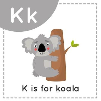 Flashcard alfabeto animale per bambini. la lettera di apprendimento i. k sta per koala.