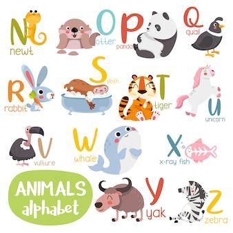 Alfabeto animale grafico dalla n alla z. alfabeto zoo carino con animali in stile cartone animato.