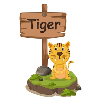 Alfabeto animale lettera t per tigre