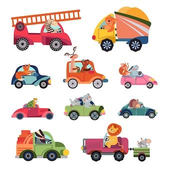 Autisti di auto animali. veicolo per bambini dei cartoni animati, gruppo di trasporto di animali divertenti. simpatici corridori, leone rettili isolati che guidano personaggi vettoriali. autista di automobile del fumetto dell'illustrazione, guida del camion della macchina