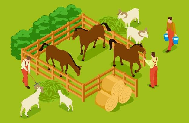 Fattoria degli animali, bestiame con cavalli, capre, pecore e illustrazione isometrica dei lavoratori