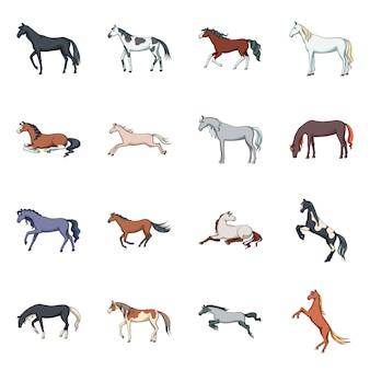 Animale e stallone. collezione animali e fattoria