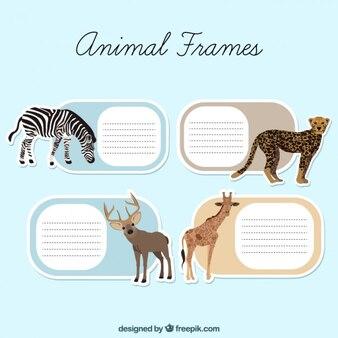 Etichette di caselle di testo degli animali