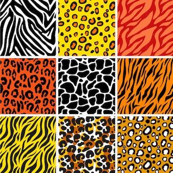 Collezione di pattern texture animali
