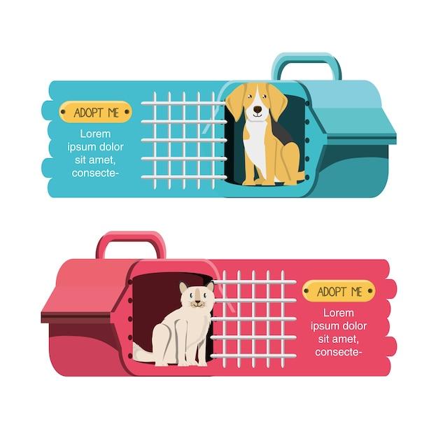 Animali nell'icona della gabbia