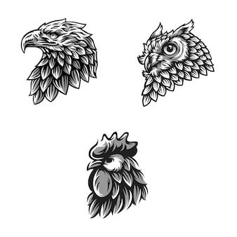 Animali design vector