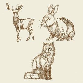 Annata della raccolta del disegno della mano degli animali