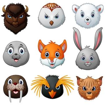 Collezione di cartoni animati testa di animali
