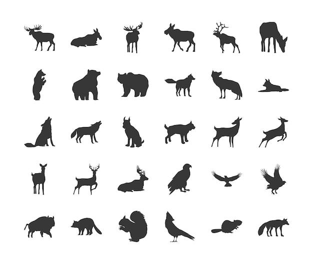 Collezione di animali selvatici diversi silhouette