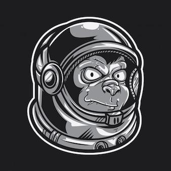 Ape astronauta