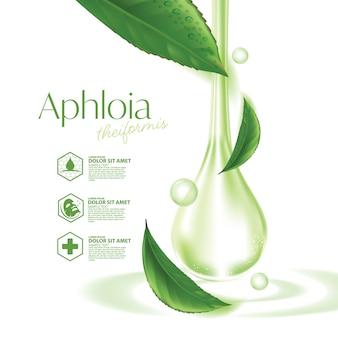 Cosmetico naturale per la cura della pelle del tè malgascio aphloia theiformis