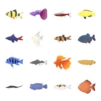 Insieme dell'icona di vettore del fumetto del pesce dell'acquario. illustrazione vettoriale di pesci d'acquario sott'acqua.