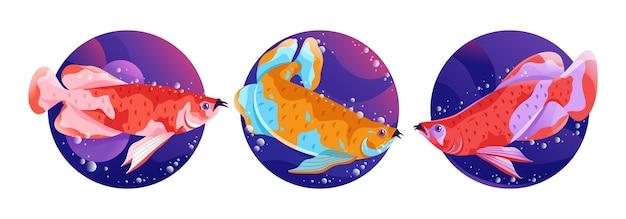 Illustrazione del materiale illustrativo del pesce di arowana