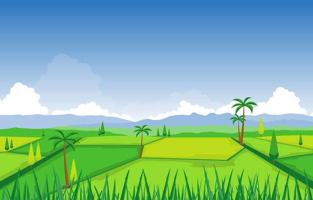 Illustrazione asiatica del paesaggio di agricoltura della piantagione di risaia del campo di riso