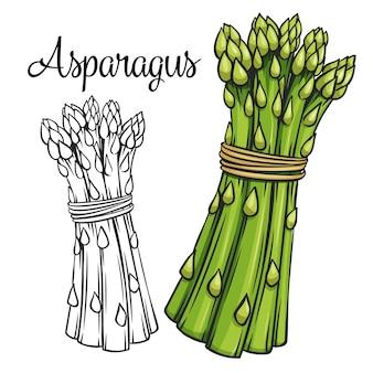 Icona di disegno di asparagi