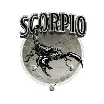 Vettore astrologico disegnato a mano romantico bella linea arte dello zodiaco scorpione illustration