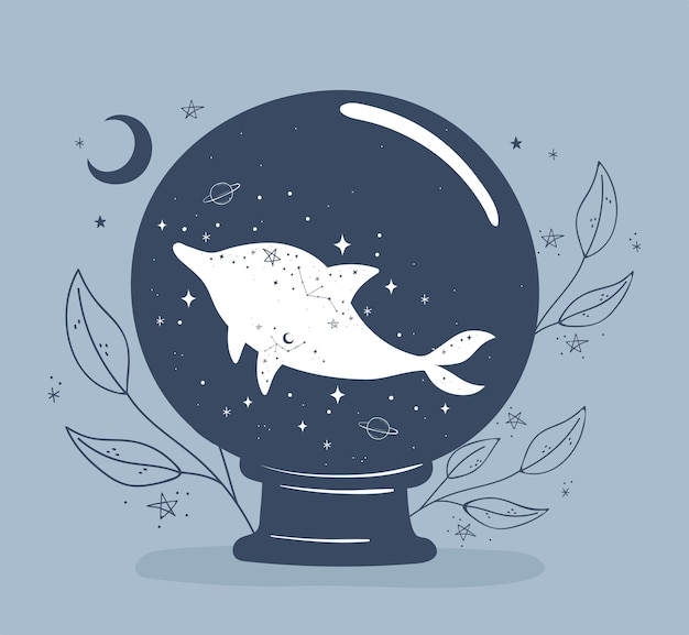 Palla di astrologia con delfino
