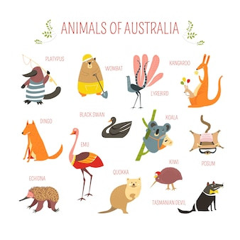 Animali australiani disegno vettoriale dei cartoni animati