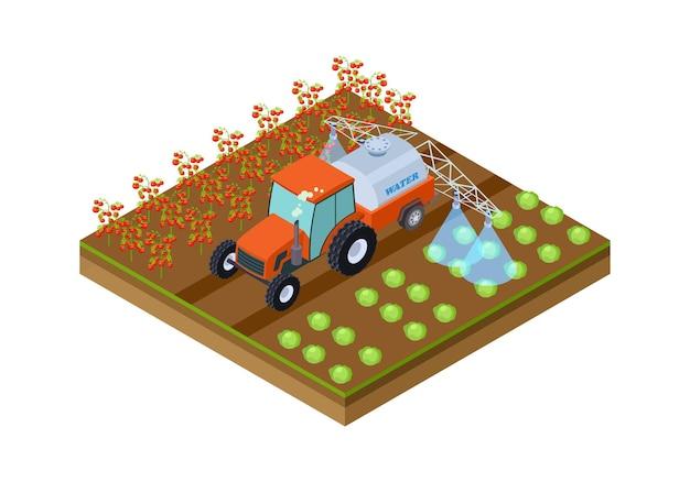 Irrigazione automatica delle colture. macchina per innaffiare pomodori e cavoli. posizione della piantagione isometrica, illustrazione vettoriale dell'orto. coltivazione agricola isometrica, illustrazione organica