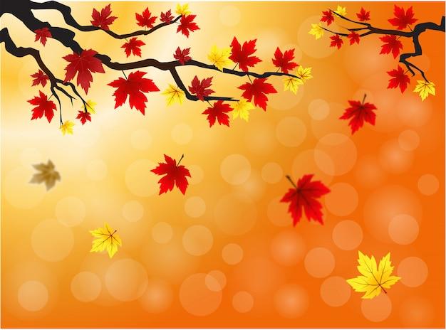 Sfondo autunno con foglie cadute acero offuscata.