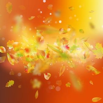 Sfondo autunno con foglie.