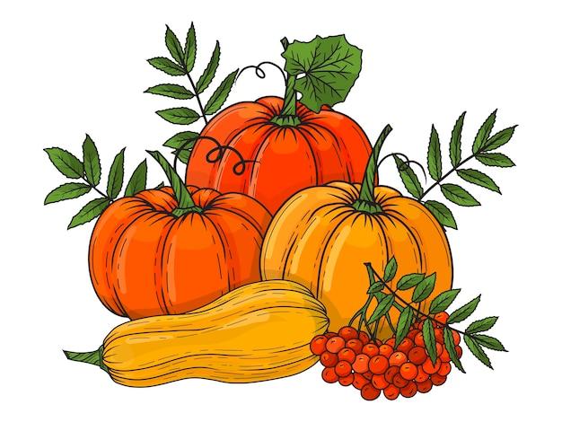 Composizione autunnale con zucche e foglie. immagine disegnata a mano. illustrazione. colorato oggetto per imballaggi, pubblicità, menu, biglietti di auguri.