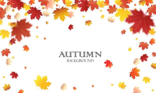 Modello di vettore del fondo delle foglie cadenti di autunno. vettore foglia