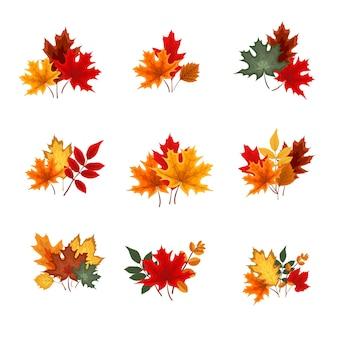 Collezione di icone di foglie che cadono autunno