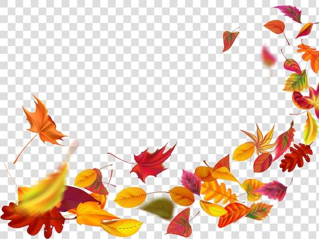Foglie autunnali che cadono. la caduta della foglia, il vento aumenta il fogliame autunnale e l'illustrazione delle foglie di giallo