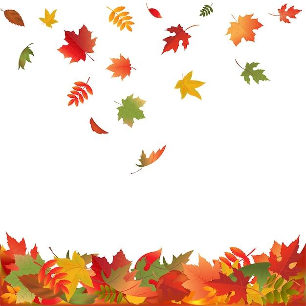 Autunno foglie che cadono, su sfondo bianco, illustrazione