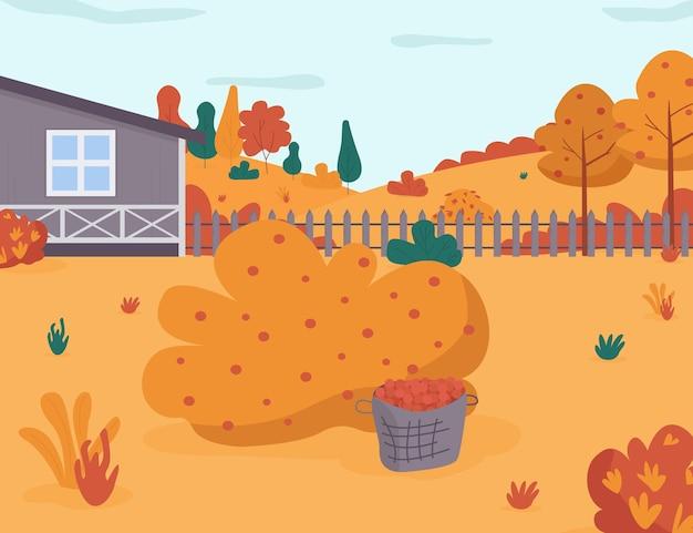 Illustrazione piana dei semi del raccolto del giardino di autunno. raccolta stagionale da cespugli di bacche. cortile della casa. giardino di casa in cortile con arbusto. paesaggio autunnale stagionale dei cartoni animati 2d per uso commerciale