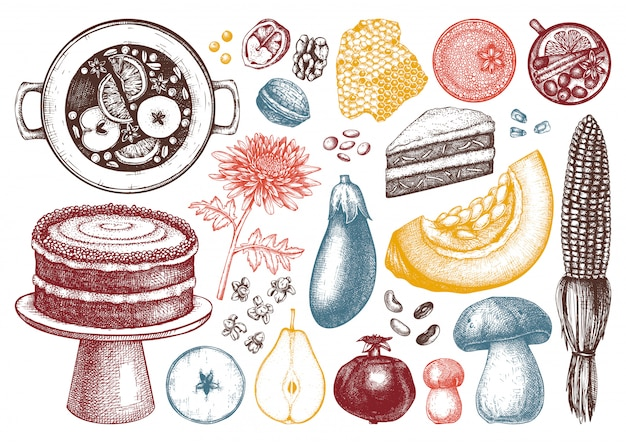 Collezione di elementi del festival del raccolto autunnale. illustrazioni tradizionali del giorno del ringraziamento. schizzi di cibi e bevande fatti in casa. verdure, frutta, fiori disegnati a mano.