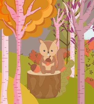 Autunno illustrazione di simpatico scoiattolo con alberi di ghiande foresta