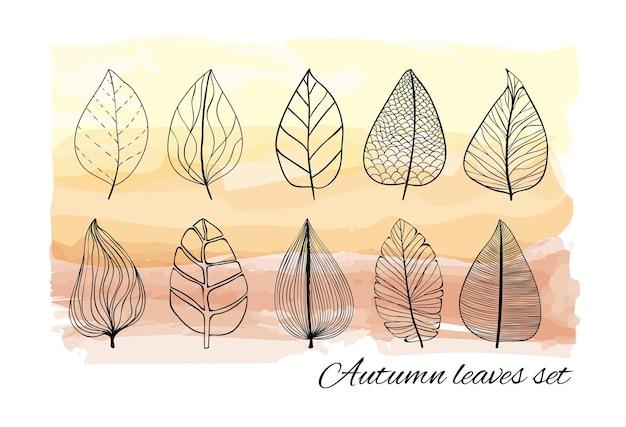 L'autunno sta arrivando insieme di foglie con motivi diversi