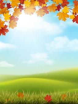Autunno paesaggio erba collina ramo di acero