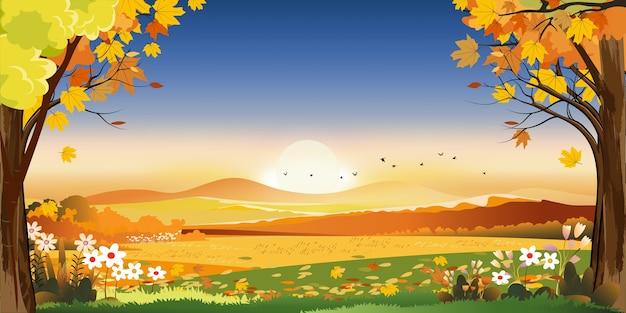 Paesaggi autunnali della campagna con tramonto e cielo blu e rosa