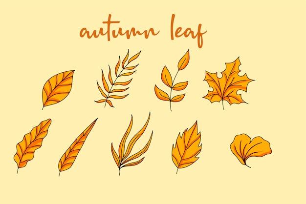 Progettazione disegnata a mano dell'elemento delle foglie di autunno