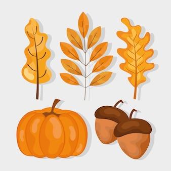 Piante con foglie d'autunno