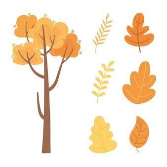 Raccolta delle icone del fogliame della foglia del ramo di albero della natura di autunno