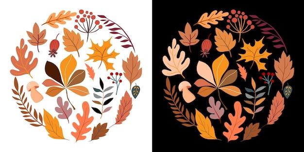 Composizione rotonda autunnale con foglie e piante diverse due sfondi diversi