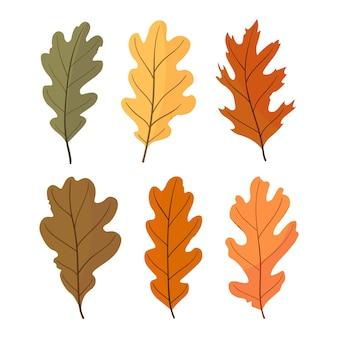 Insieme di autunno di foglie colorate di quercia. illustrazione.