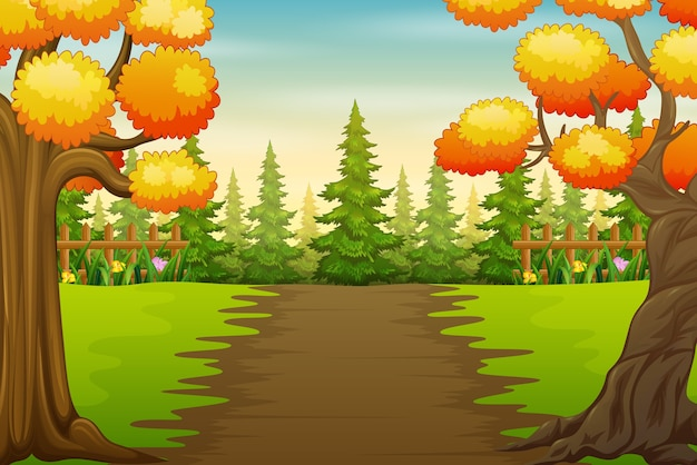 Alberi di autunno nel paesaggio del parco