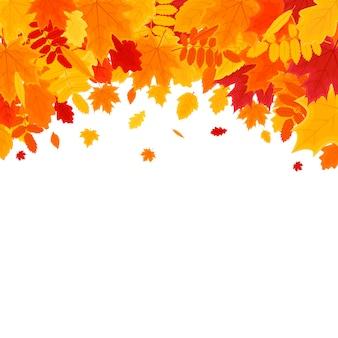 Autumn vector background con fogliame. banner di illustrazione vettoriale.