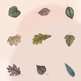 Set di foglie autunnali in stile acquerello