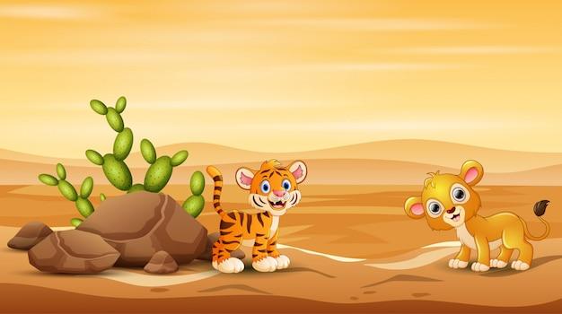 Tigrotto e leone che giocano al paesaggio del deserto