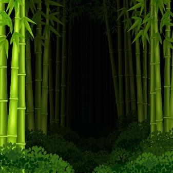 Foresta di bambù di sfondo durante la notte