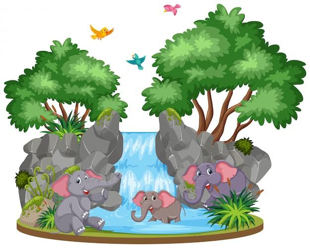 Scena di sfondo di elefanti alla cascata