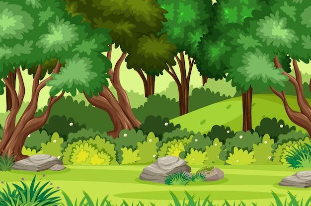 Scena di sfondo con molti alberi nel parco