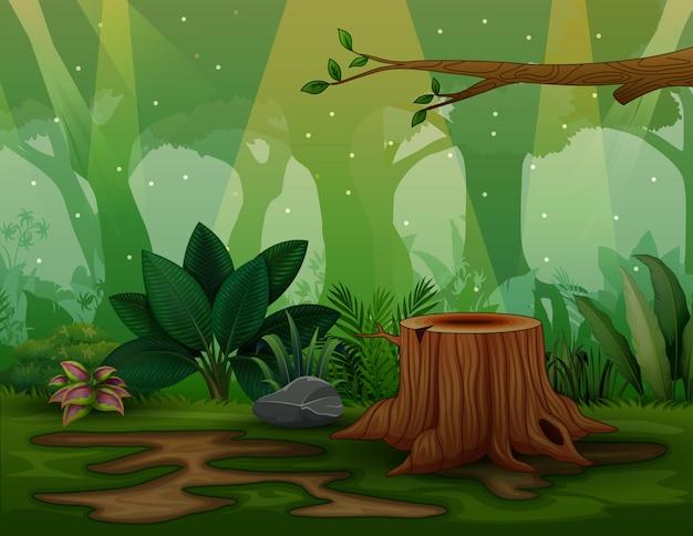 Scena del fondo con il ceppo di albero nella foresta