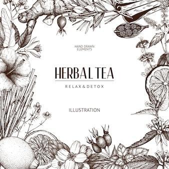 Sfondo con schizzo di tè vintage. erbe abbozzate, frutta, modello di spezie